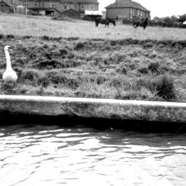 Warwick.  Grand Union canal