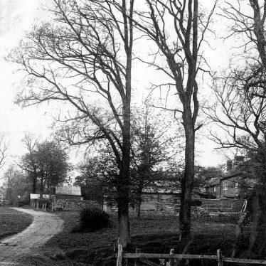 Flecknoe.  Village pond