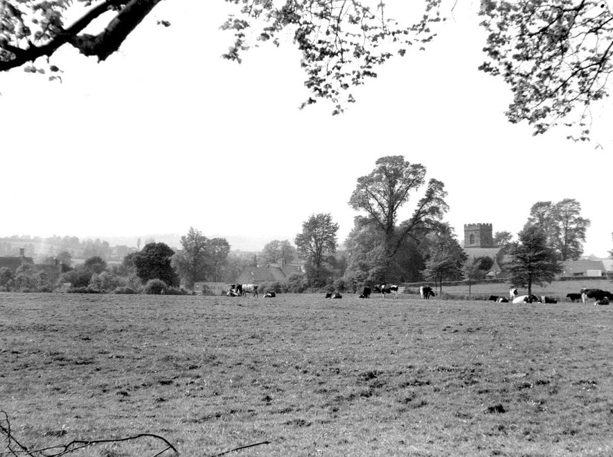 Barcheston.  View across meadows towards the church |  IMAGE LOCATION: (Warwickshire County Record Office)