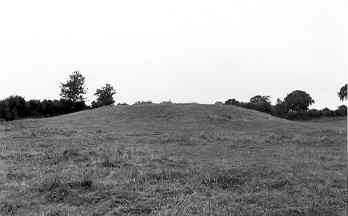 Medieval Mound 200m N of Alderhanger Wood