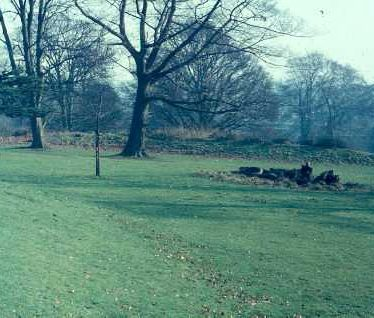 Possible Iron Age Hillfort at Priory Park