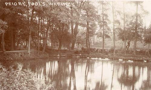Medieval fishponds to the north west of Priory Park, Warwick | Warwickshire County Council
