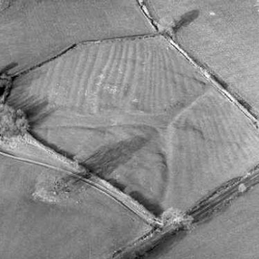 Chelmscote Medieval deserted settlement near Brailes | Warwickshire County Council