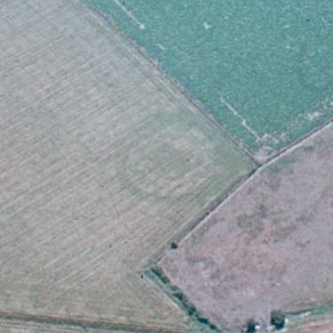 Neolithic or Bronze Age Ring Ditches/ Kings Newnham Site A