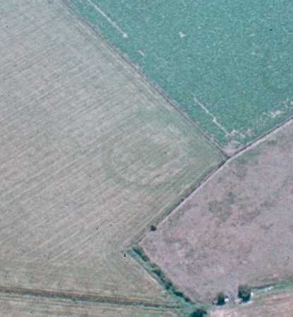 Ring ditches visible as cropmarks, King's Newnham | Warwickshire County Council