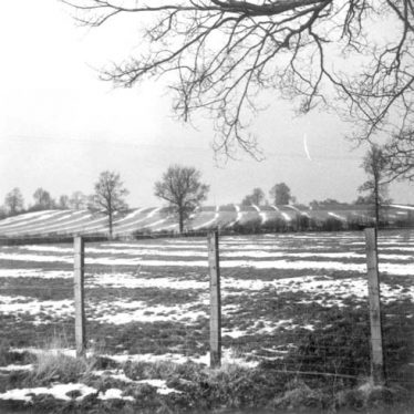 Ridge & Furrow cultivation Clifford Chambers Parish