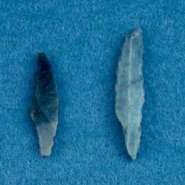 Mesolithic flints from Great Packington