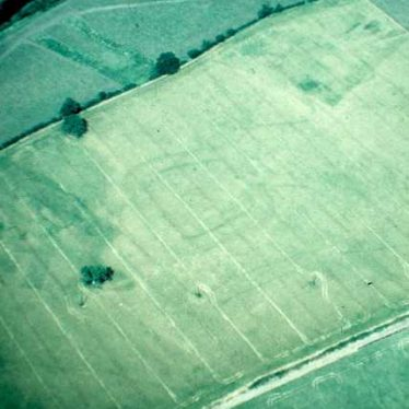 Undated crop mark settlement, Barford