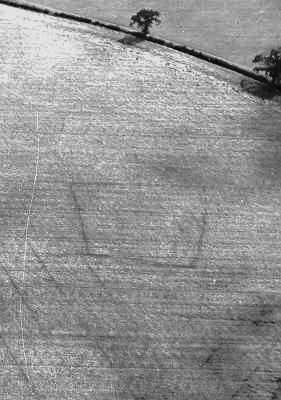 An enclosure visible as a cropmark south east of Bourton Heath | WA Baker