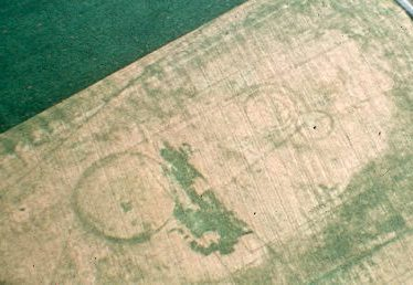 Ring ditches appearing as cropmarks at King's Newnham | Warwickshire County Council