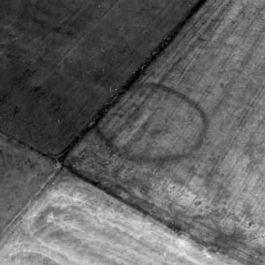 A ring ditch visible as a cropmark 500m east of Bretford | WA Baker