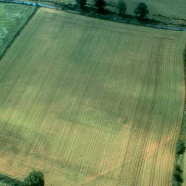 Rectilinear Cropmark Enclosure NE of Harbury Lane