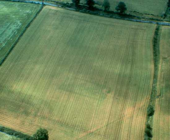 A rectangular enclosure at Bishops Tachbrook | Warwickshire County Council