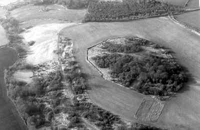 Park pale, Ettington Deer Park   Warwickshire County Council