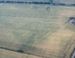 Cropmark Enclosure West of Laughs Buildings