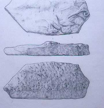Drawing of a fragment of a Roman marble sarcophagus from Shotteswell | Warwickshire County Council