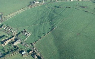 Chesterton Magna Shrunken Medieval Settlement (Le Grenesyde)