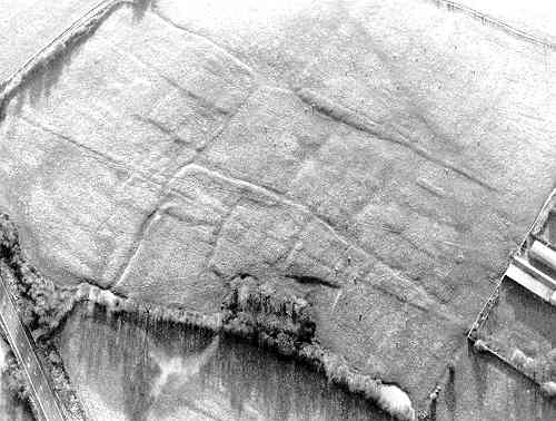 Earthworks of a fishpond at Watergall deserted settlement | Warwickshire County Council