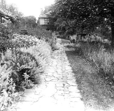 Avonside House garden