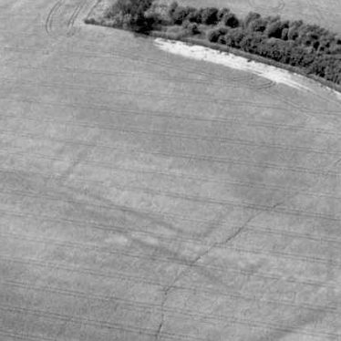 Enclosure south of Meon Hill hillfort