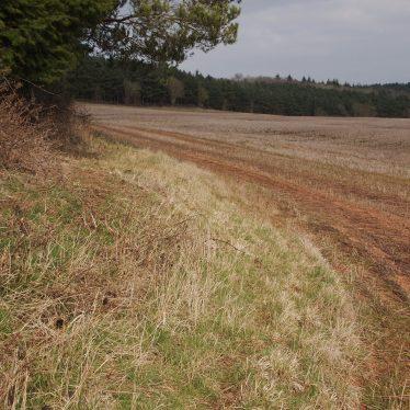 Findspot - Neolithic or Bronze Age flint