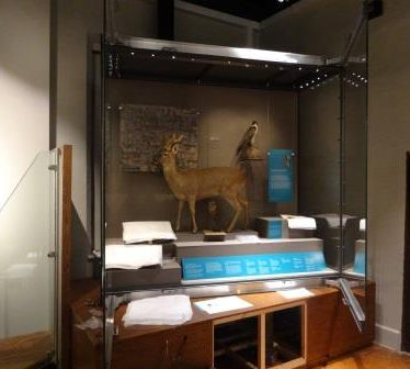 The first case in the museum, on its way to completion.   Image courtesy of Andy Isham, Heritage & Culture Warwickshire