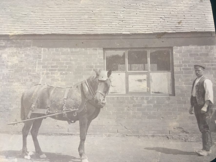 Exhall nr Coventry. Pit pony, c. 1915. | Image courtesy of Geoffrey Legh Jackson Dalzell-Payne
