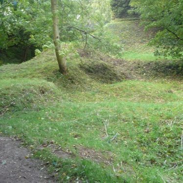 Mound as you approach the dam from Finham Brook. 2017.   Image courtesy of William Arnold