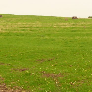 Ridge and Furrow with Headland or Hollow Way