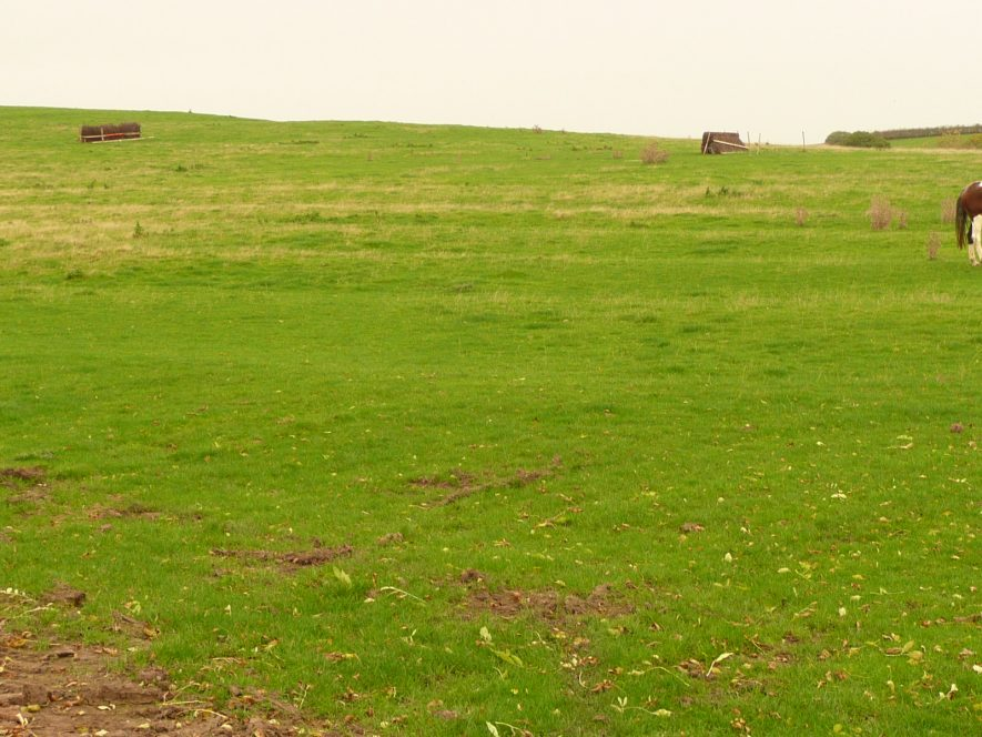 This patch of ridge and furrow is adjacent to the footpath from Frankton to the Fosse Way north of Marton at the base of Mill Hill. 2017. | Image courtesy of William Arnold