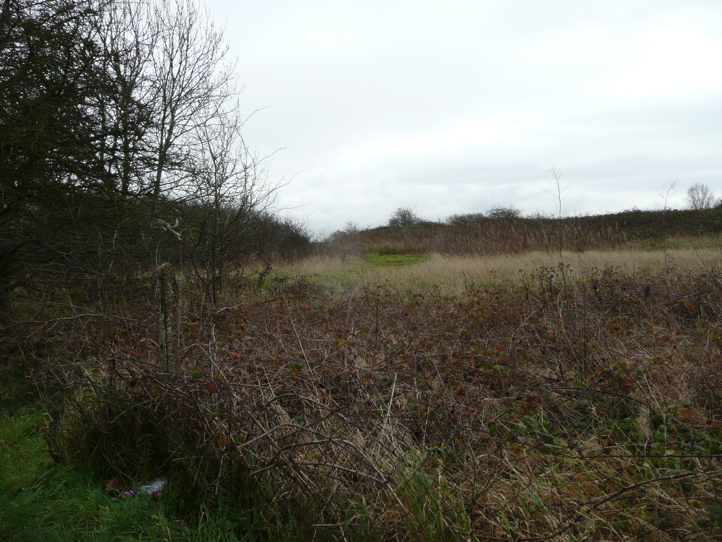 Site of migration cemetery 500m e of baginton church our warwickshire looking towards baginton airport across the scrubland of the landfill site on the sand gravel pit where the cemetery was 2017 publicscrutiny Gallery