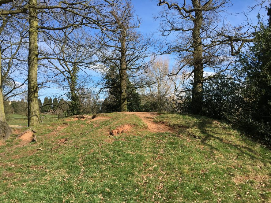 Mound at Abbey Fields, March 25th 2018. | Image courtesy of Darian Brookes