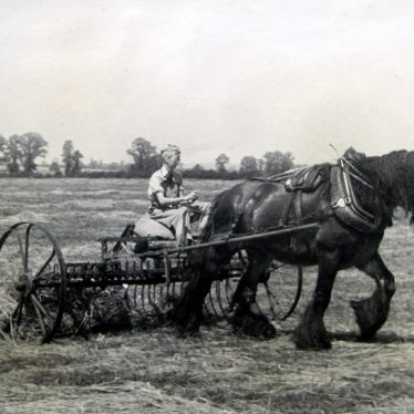 Bickmarsh. Joan Galloway Using Horse Power at Bickmarsh Hall Farm