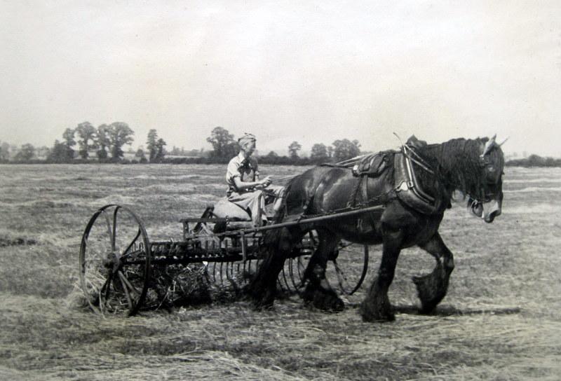 Bidford on Avon. Joan Galloway using horse power at Bickmarsh Hall Farm, 1940s. | Image courtesy of Valerie Harman