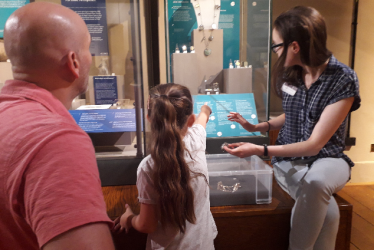 Summer Volunteering at Warwickshire Museum