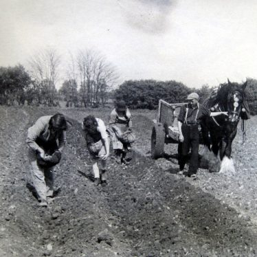 Bickmarsh. Planting potatoes at Bickmarsh Hall Farm