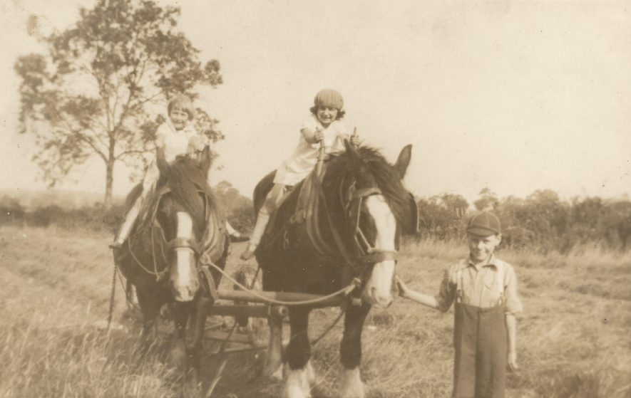 Ladbroke. Jo Lowrie's sister brother and cousin on the farm's two shire horses, 1928. | Image courtesy of Jo Lowrie