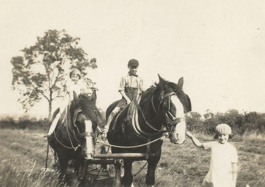 Ladbroke. Jo Lowrie's older sister and brother with cousin Winifred on the two shire horses. | Image courtesy of Jo Lowrie
