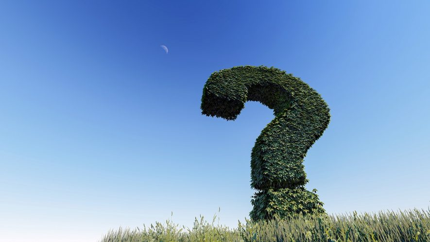 A topiary question mark. | Image originally from Pixabay