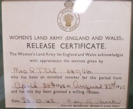 Rose Evelyn Milligan's demob paper from the Women's Land Army | Image courtesy of Rose Evelyn Milligan