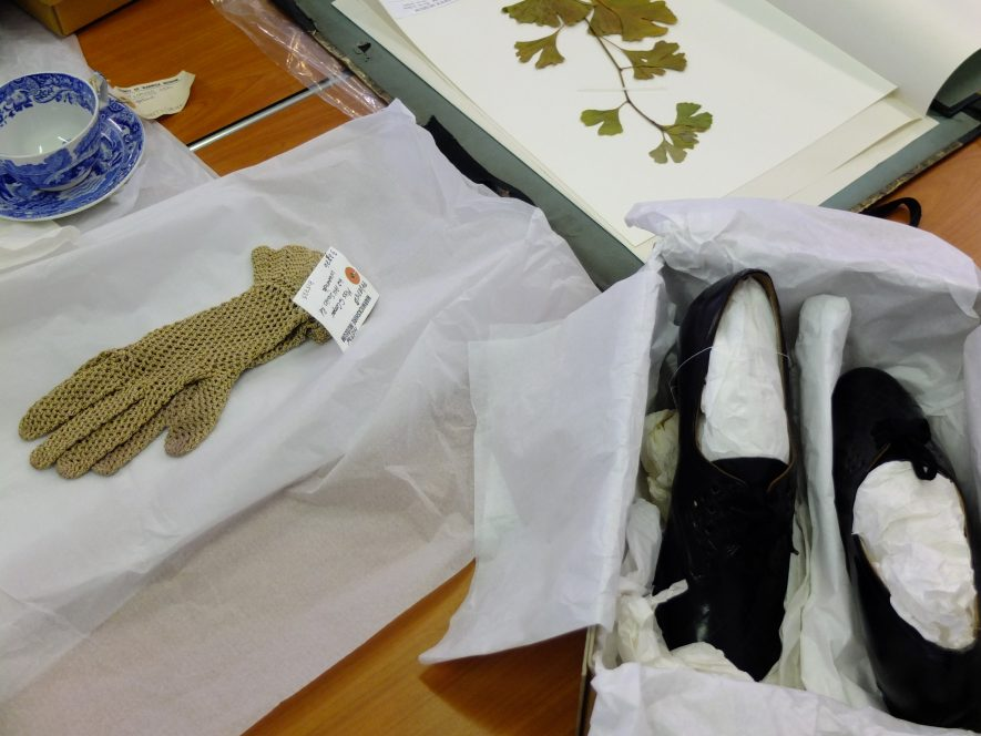 Museum collection objects that represent journeys and migration were shown to the Crossing Borders group to inspire their own artworks and conversations. They included sturdy shoes and a smart pair of gloves for travelling; a teacup to remind you of home; and a Ginkgo Biloba plant specimen that was brought to the UK hundreds of years ago. | Image courtesy of Heritage & Culture Warwickshire