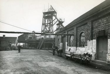 Pit Ponies - Stories from the Warwickshire Coalfield