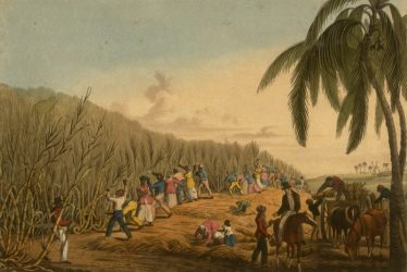 Owen and Elizabeth Mary Pell: Leamington's Antiguan Sugar Planters